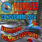 Exposition d'oiseaux exotiques à Fourques sur Garonne (47), le dimanche 23 novembre 2014