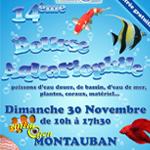 14 ème Bourse Aquariophile à Montauban (82), le dimanche 30 novembre 2014