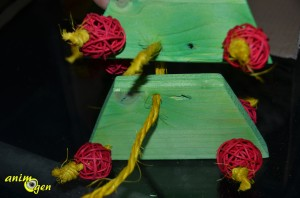 Jouet à fabriquer : un sapin en bois pour nos perroquets (tutoriel, test, avis, prix)