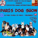 Exposition canine internationale « Paris Dog Show » à Vincennes (75) du samedi 10 au dimanche 11 janvier 2015