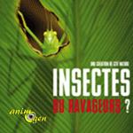 Exposition «Insectes ou ravageurs?» à Arras (62), jusqu'au vendredi 31 juillet 2015