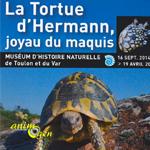 Exposition « La tortue d'Hermann, joyau du maquis » à Toulon (83), jusqu'au dimanche19 avril 2015