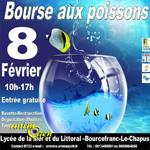 Bourse aux poissons à Bourcefranc le Chapus (17), samedi 08 février 2015