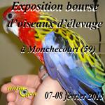 Exposition bourse d'oiseaux d'élevage à Monchecourt (59), du samedi 07 au dimanche 08 février 2015