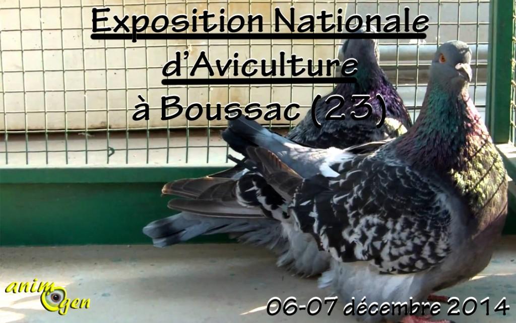 Exposition Nationale d'Aviculture à Boussac (23), du samedi 06 au dimanche 07 décembre 2014