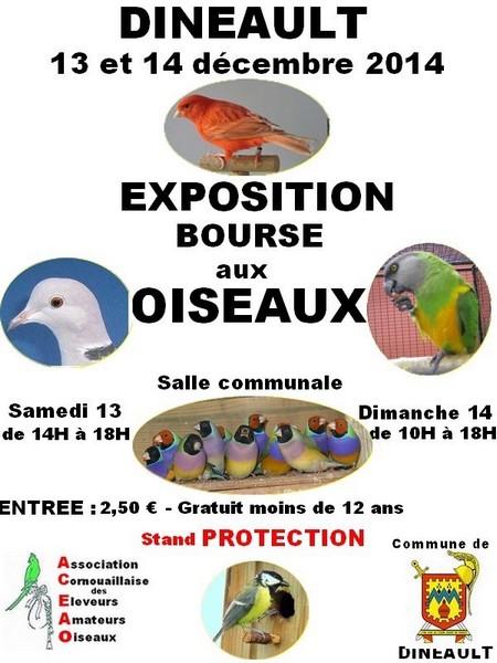 Exposition-Bourse aux oiseaux à Dineault (29), du samedi 13 au dimanche 14 décembre 2014
