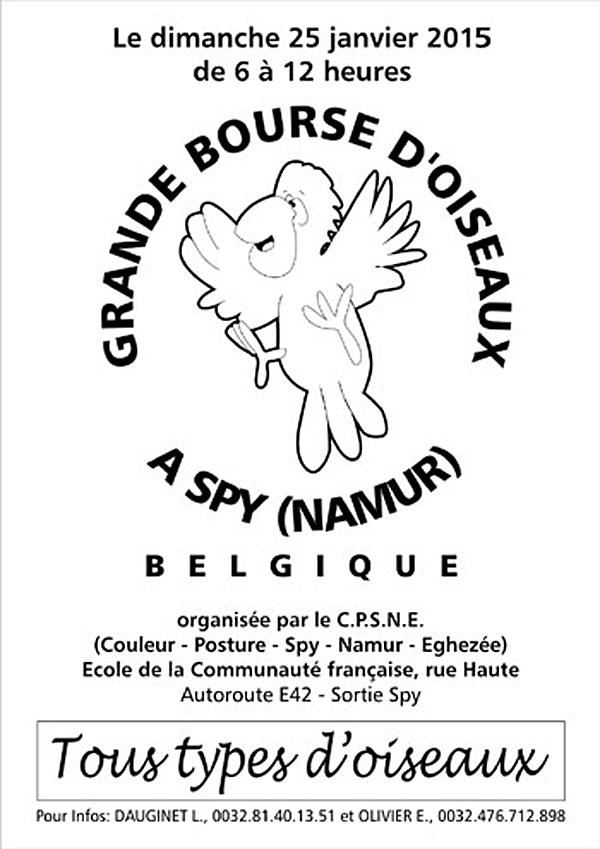 Grande Bourse d'oiseaux à Spy (Belgique), le dimanche 25 janvier 2015