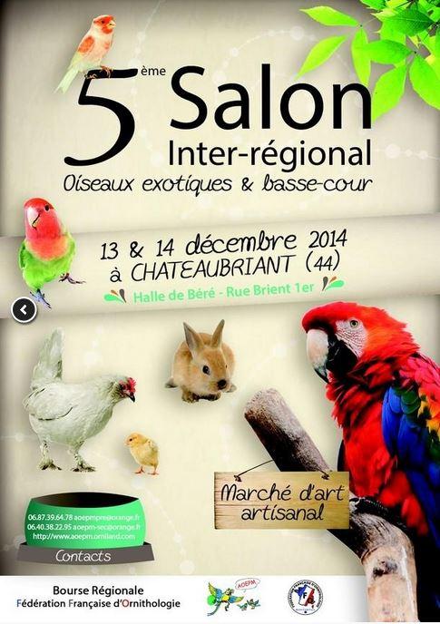 5 ème Salon inter-régional oiseaux exotiques et basse-cour à Châteaubriant (44), du samedi 13 au dimanche 14 décembre 2014