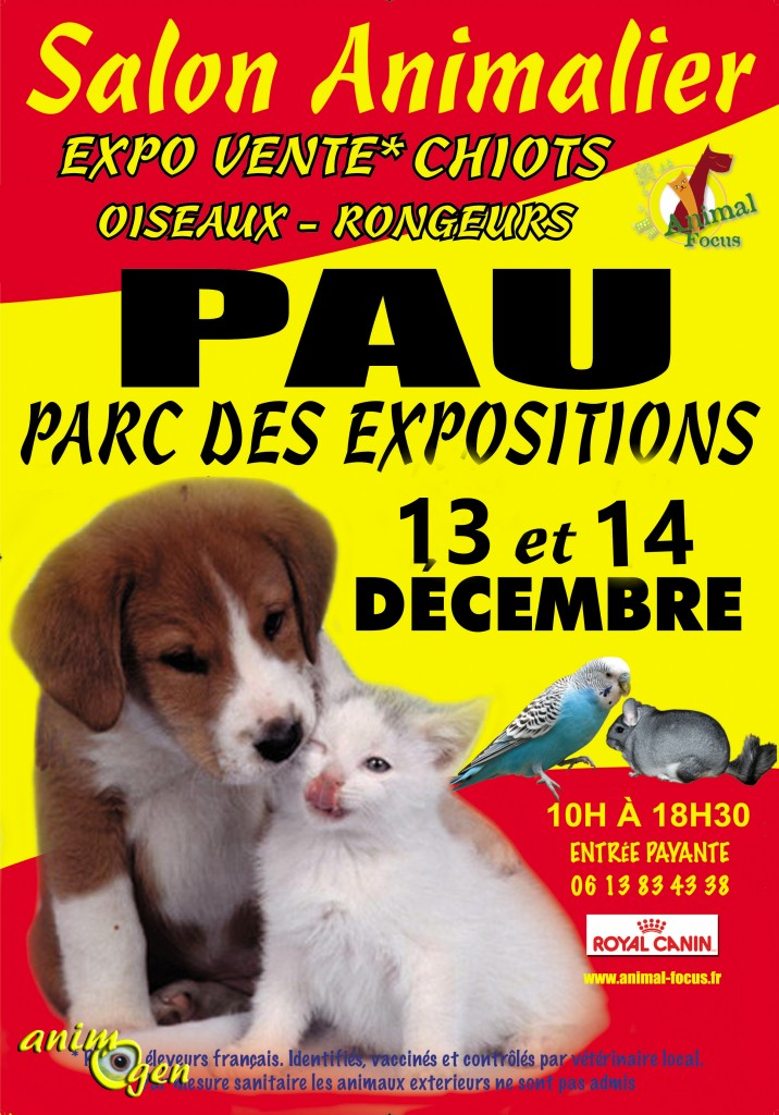 Salon du chiot animal focus pau 64 du samedi 13 au for Salon du chat et du chien toulouse