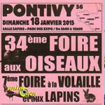 34 ème Foire aux oiseaux et 7 ème foire à la volaille et aux lapins à Pontivy (56), le dimanche 18 janvier 2015