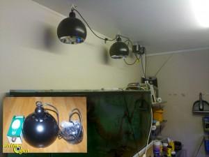 L'éclairage dans un aquarium d'eau douce (type, comparatif, utilisation)