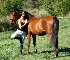 Le yoga pour les chevaux, une approche zen de l'équitation