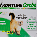 Frontline combo chat 1 pipette