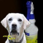 Anti-parasitaire pour chiens et chiots : anti-puces Effipro, Virbac (test, avis, prix)