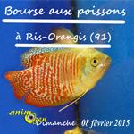 Bourse aux poissons à Ris Orangis (91), le dimanche 08 février 2015
