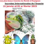 21 èmes Journées internationales de l'insecte à Perpignan (66), du samedi 31 janvier au dimanche 01 er février 2015
