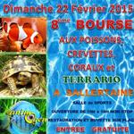 8ème Bourse aux poissons, crevettes, coraux et terrario à Sallertaine (85), le dimanche 22 février 2015