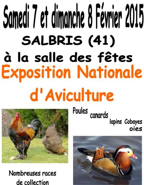 Exposition d'aviculture à Salbris (41), du samedi 07 au dimanche 08 février 2015