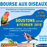 Bourse aux oiseaux à Soustons (40), le dimanche 08 février 2015