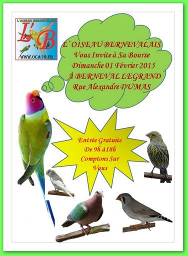 Bourse aux oiseaux à Berneval le Grand (76), le dimanche 01 er février 2015