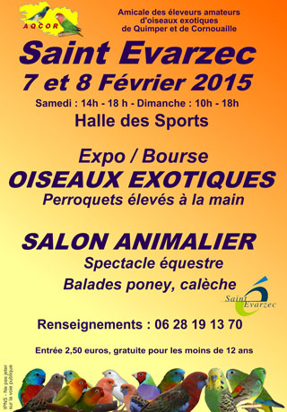 Exposition-Bourse d'oiseaux exotiques à Saint Evarzec (29), du samedi 07 au dimanche 08 février 2015