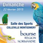 12 ème Bourse d'oiseaux à Colleville Montgomery (14), le dimanche 22 février 2015