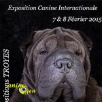 Exposition canine internationale à Troyes (10), du samedi 07 au dimanche 08 février 2015