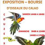 21 ème Bourse aux oiseaux à Couzeix (87), du samedi 14 au dimanche 15 février 2015