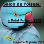 Salon de l'oiseau à Saint Fulgent (85), le dimanche 25 janvier 2015