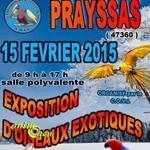 Exposition-Bourse d'oiseaux exotiques à Prayssas (47), le dimanche 15 février 2015