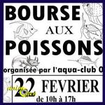 Bourse aux poissons à Charleville Mézières (08), le dimanche 22 février 2015