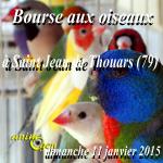 Bourse aux oiseaux à Saint Jean de Thouars (79), le dimanche 11 janvier 2015