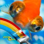 Alimentation et santé : comment préserver les couleurs de nos poissons ?