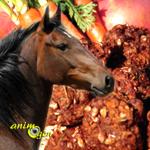 Alimentation : friandise aux pommes et carottes à cuisiner pour nos chevaux