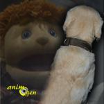 Comportement : la peur des objets chez le chien (causes, symptômes, solutions)