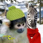 Comment les animaux passent-ils l'hiver dans les zoos ?