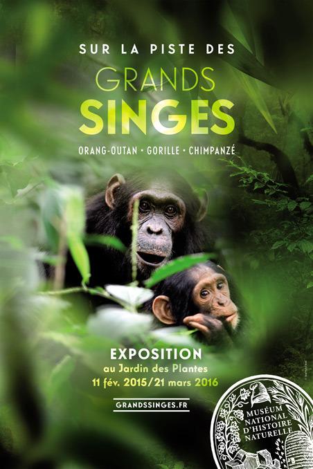 """Exposition """"Sur la piste des grands singes"""" à Paris (75), du mercredi 11 février au samedi 21 mars 2015"""