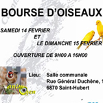 Bourse d'oiseaux à Saint Hubert (Belgique), du samedi 14 au dimanche 15 février 2015