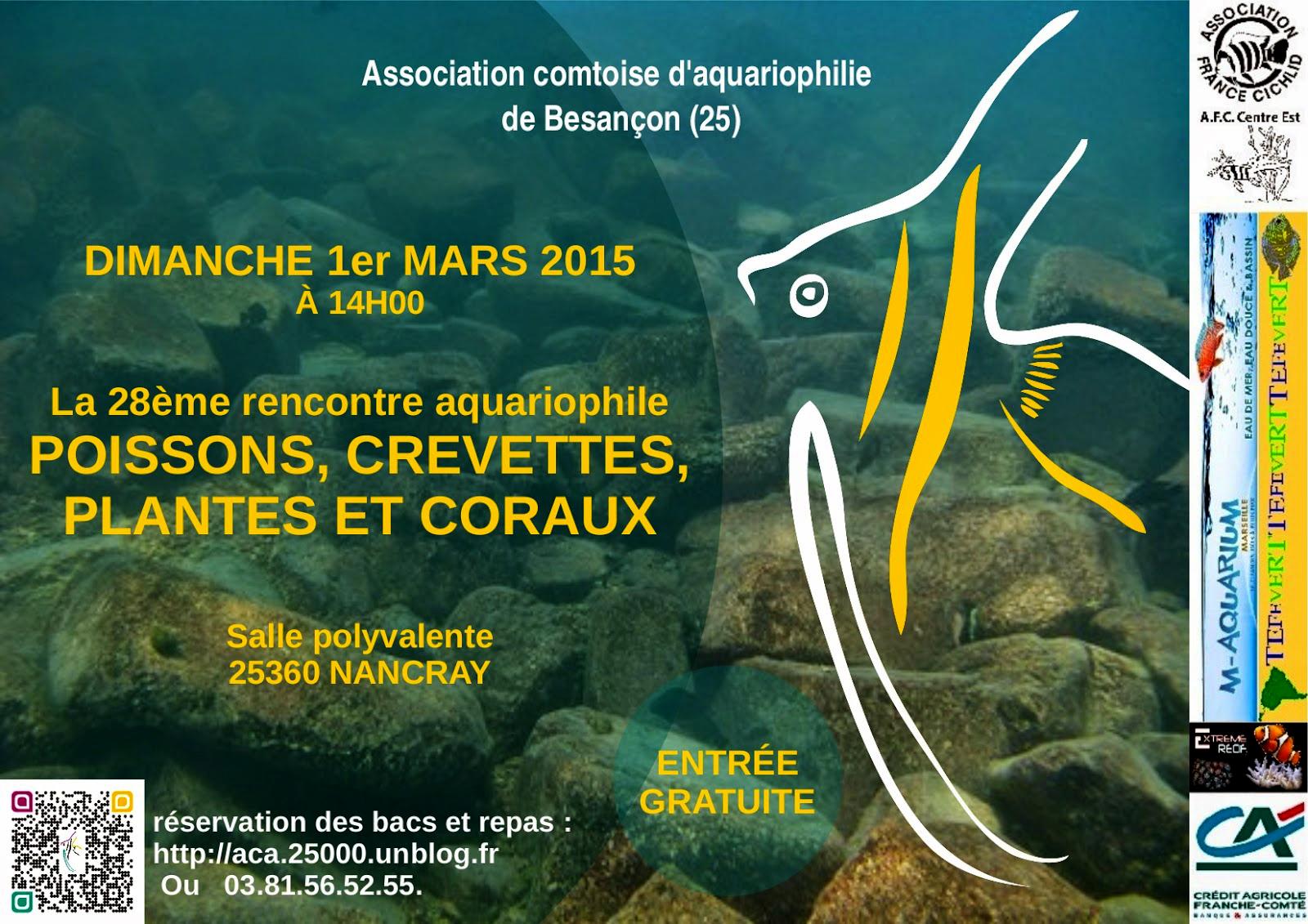 28 me rencontre aquariophile nancray 25 le dimanche for Vente aquariophilie