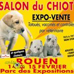 Salon du chiot à Rouen (76), du samedi 14 au dimanche 15 février 2015