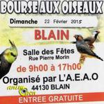 Bourse aux oiseaux à Blain (44), le dimanche 22 février 2015