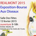 Bourse aux oiseaux à Realmont (81), le dimanche 15 février 2015