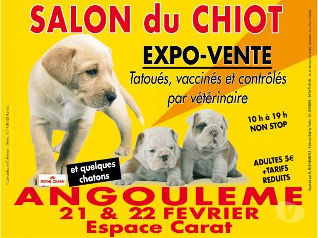 Salon du chiot à Angoulême (16), du samedi 21 au dimanche 22février 2015