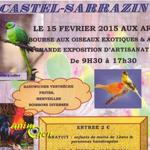 Bourse aux oiseaux exotiques et avicoles à Castel Sarrazin (40), le dimanche 15 février 2015