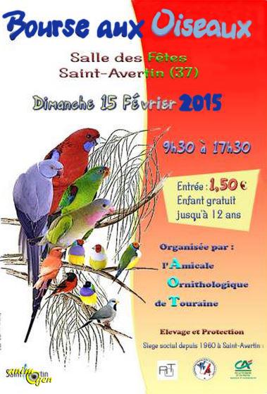 Bourse aux oiseaux à Saint Avertin (37), le dimanche 15 février 2015