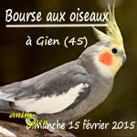 Bourse aux oiseaux à Gien (45), le dimanche 15 février 2015