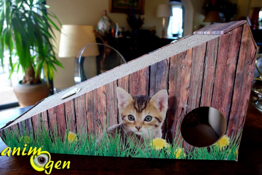 Accessoire pour chats : le grattoir Catnip, de Nobby (test, avis prix)