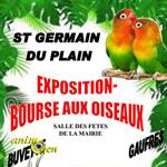 Exposition-bourse d'oiseaux à Saint Germain du Plain (71), du samedi 14 au dimanche 15 mars 2015