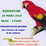 Expo-bourse aux oiseaux à Cestas (33), le dimanche 29 mars 2015