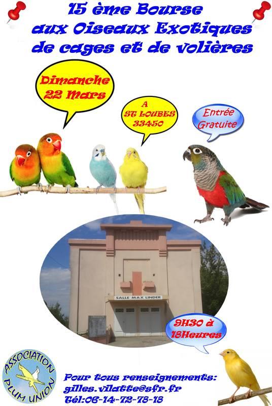 Bourse aux oiseaux à Saint Loubès (33), le dimanche 22 mars 2015